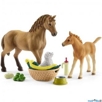 Ostatní hračky - Schleich - Jezdecký klub, Hříbě a Quarter kůň se štěňátkem a doplňky
