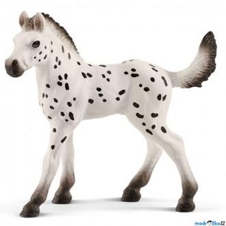 Ostatní hračky - Schleich - Kůň, Knabstrupské hříbě