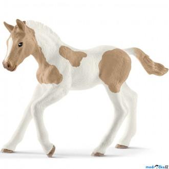 Ostatní hračky - Schleich - Kůň, American Paint Horse hříbě