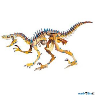 Puzzle a hlavolamy - 3D Puzzle barevné - Velociraptor