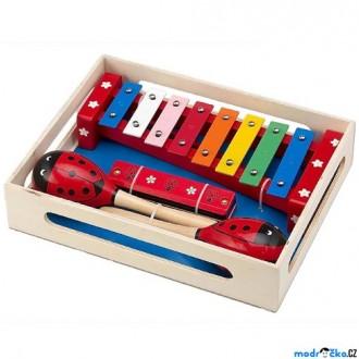 Dřevěné hračky - Hudba - Muzikální set, Beruška, 3 nástroje (Woto)