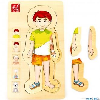Puzzle a hlavolamy - Puzzle vícevrstvé - Anatomie chlapec, 4 vrstvy, 28ks (Legler)