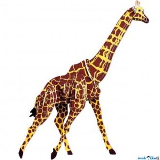 Puzzle a hlavolamy - 3D Puzzle barevné - Žirafa