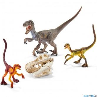 Ostatní hračky - Schleich - Dinosaurus set, Predátoři na lovu + lebka T-Rexe