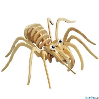 Puzzle a hlavolamy - 3D Puzzle přírodní - Tarantule větší