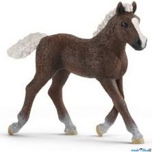 Schleich - Kůň, Schwarzwaldské hříbě