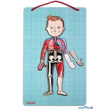 Puzzle magnetické - Lidské tělo (Janod)