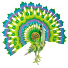 3D Puzzle barevné - Páv