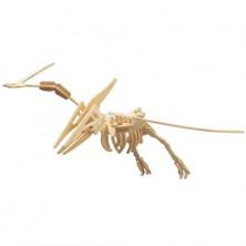3D Puzzle přírodní - Pteranodon