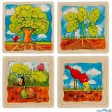 Puzzle výukové - Vývoj stromu, 44ks (Goki)