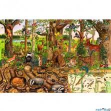 Puzzle dřevěné - Maxi, Život v lese, 24ks (Bigjigs)