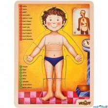 Puzzle výukové - Anatomie, Lidské tělo, 12ks (Woody)