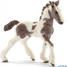 Schleich - Kůň, Irský Tinker hříbě