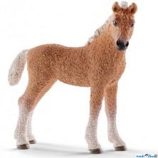 Schleich - Kůň, Baškirské hříbě