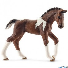 Schleich - Kůň, Trakénské hříbě