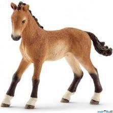 Schleich - Kůň, Tennesseeské hříbě