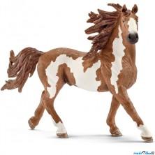 Schleich - Kůň, Pinto hřebec