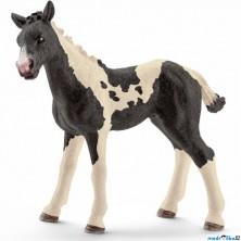 Schleich - Kůň, Pinto hříbě