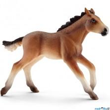 Schleich - Kůň, Mustang hříbě