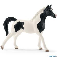 Schleich - Kůň, Pintabianský hřebec