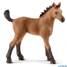 Schleich - Kůň, Americký quarter hříbě